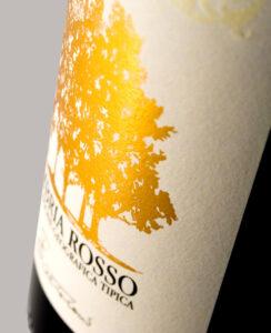 cantina Le cimate vini di montefalco